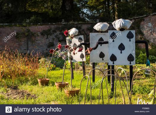 alice garden
