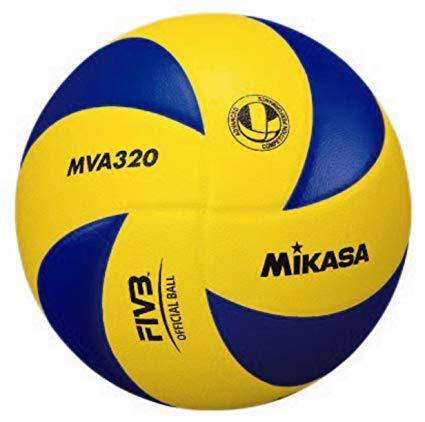 ballon de volley ball