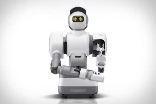 robot menage