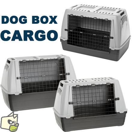 caisse transport chien voiture