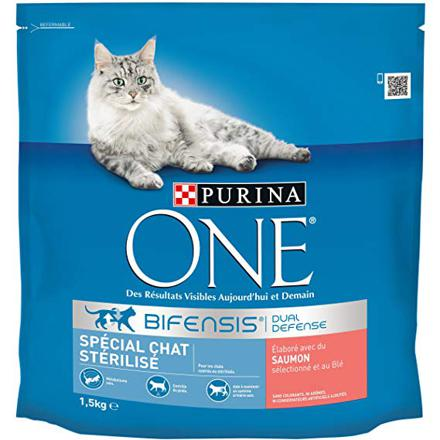 croquette purina chat
