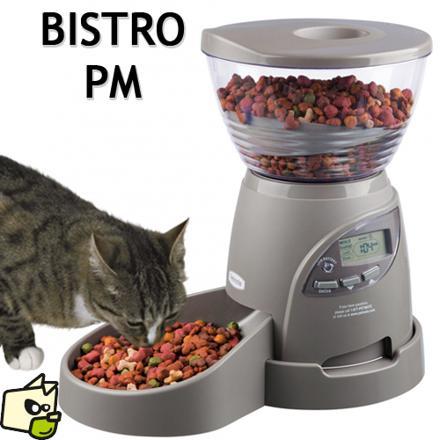 distributeur pour chat