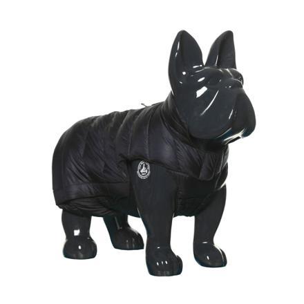 doudoune chien