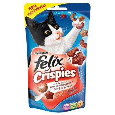 friandise chat