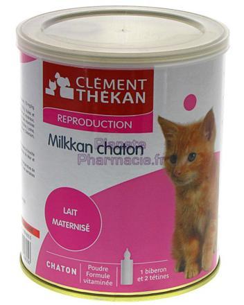 lait en poudre pour chaton
