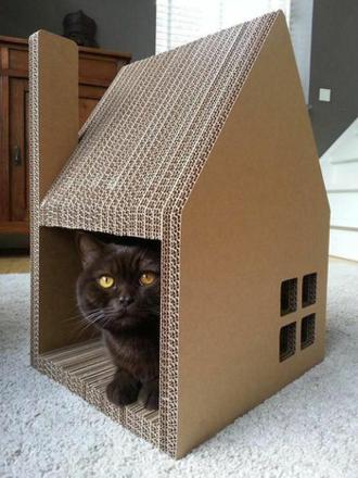 maison carton chat