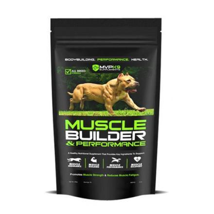 proteine pour chien