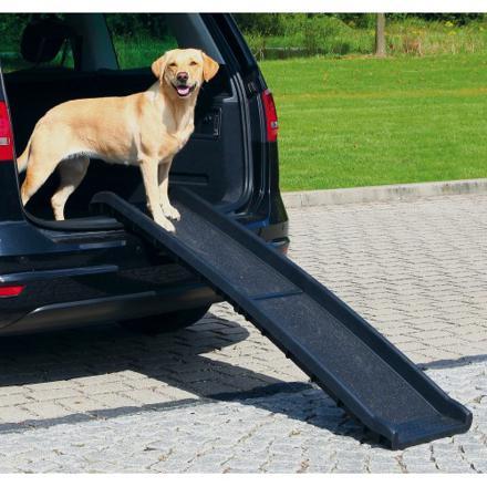 rampe pour chien voiture