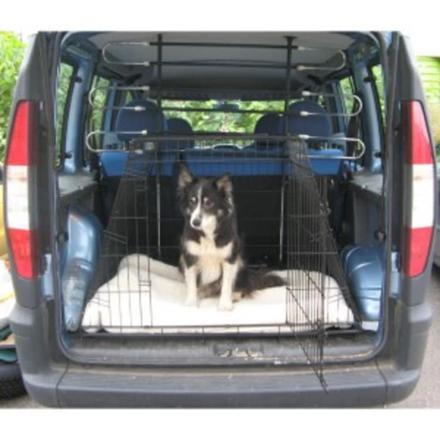 transport de chien